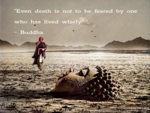 quotes-wisdom-inspirational-list-of-top-wisdom-quotes-3